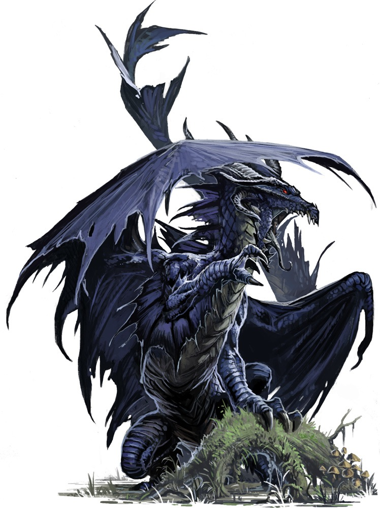 black dragon Black dragon (ブラックドラゴン, burakku doragon, black dragon) is one of the black saints that served the evil phoenix ikki chronology black dragon first appears outside the mansion kido alongside with the black pegasus and andromeda black, to find the black swan hyoga who was fighting with swan, mandated by phoenix ikki.